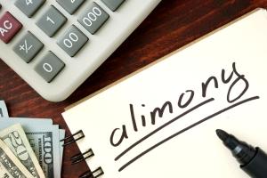 Понятие и сущность алиментных платежей