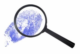 Виды экспертиз в уголовном процессе