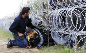Уголовная ответственность за организацию незаконной миграции