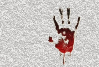 Что понимается под убийством с особой жестокостью?