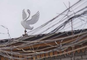 Тюрьма для пожизненного заключения «Белый лебедь» в России